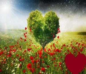 Wazifa To Get Married To Someone You Love